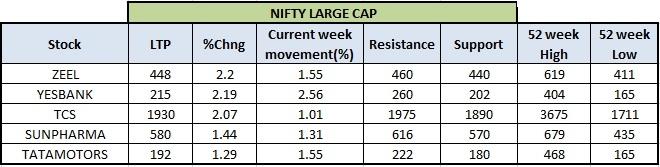 Nifty Large Cap Stocks