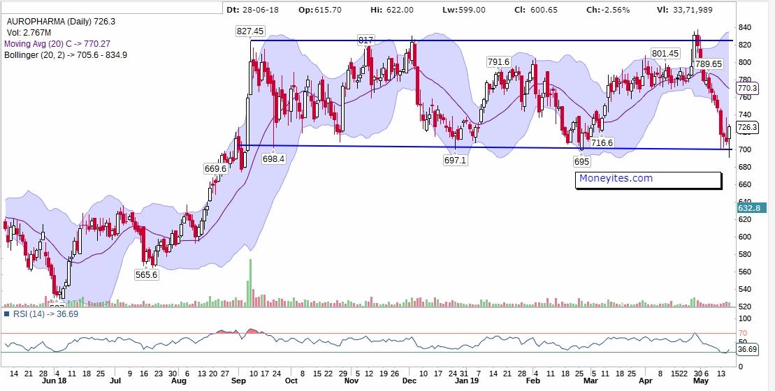 Auropharma Daily Chart