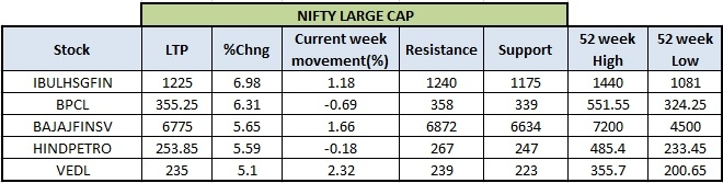Nifty Large Cap Stocks